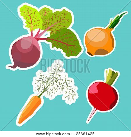 Vector set of flat cartoon vegetables stickers. Vector background. Flat icon. Vegetarian sticker. Healthy food sticker. Raw food diet.