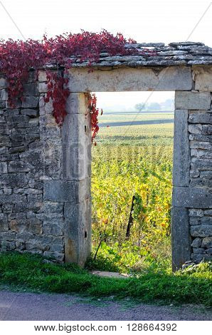 Portal of vineyard in Burgundy near Beaune Cote d'Or France Europe