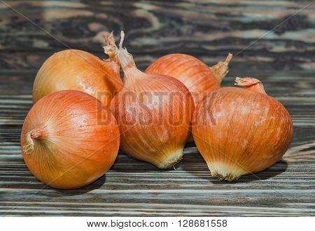 Golden onion closeup on wooden background, a thorough inspection