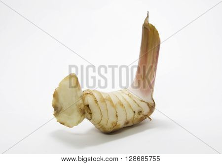 fresh galangal on a white background natural