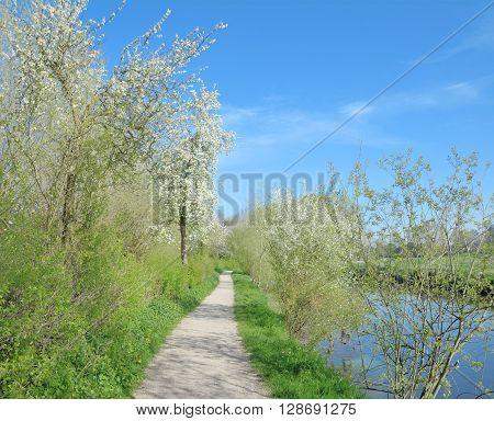 Springtime in Wachtendonk at River Niers in Rhineland,Lower Rhine Region,North Rhine Westphalia,Germany