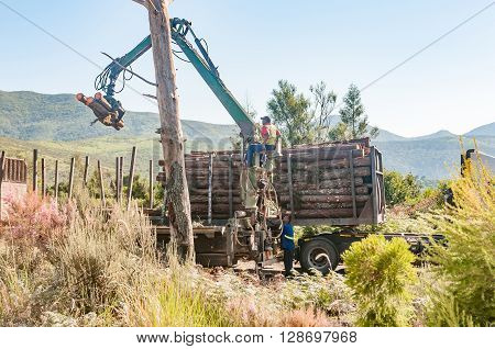 MILLWOOD SOUTH AFRICA - MARCH 4 2016: Workers loading logs on a truck fort transport to the mills