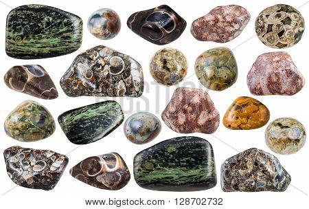Set Of Various Madagascar Jasper Gemstones