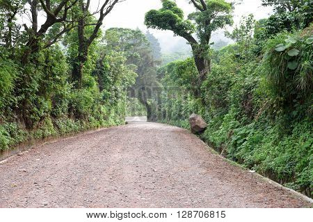 Path through rich highlands vegetation along the caffeinated community in Apaneca Ruta de Las Flores itinerary El Salvador