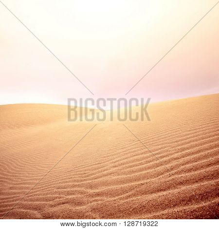 Sand dunes and sky. Hot day in the desert. Nature landscape.