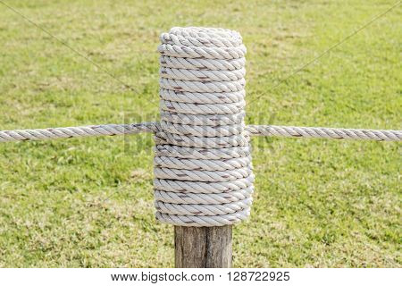 Close up the rope tired in wooden pole with green grass background.