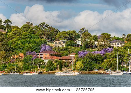 Sydney Australia - November 10 2014: Mansions on the banks of the Parramatta River in cloudy weather Sydney suburb New South Wales Australia.