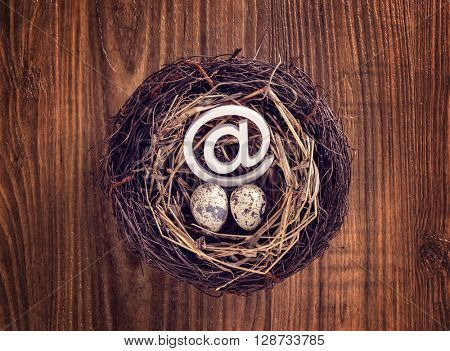 eggs with mail sign with eggs in nest