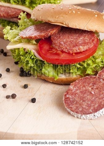 Image of selective focus on the salami sandwich