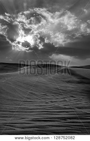 sand of Desert in Dubai United Arab Emirates