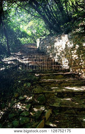 Stone steps in a shady grove of laurel in the Savina Monastery, Montenegro
