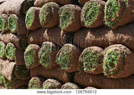 Close Up Of Turf Rolls Waiting To Be Laid As New Lawn
