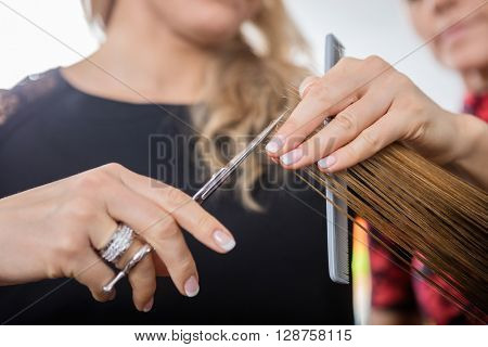 Hairstylist Cutting Client's Hair In Salon