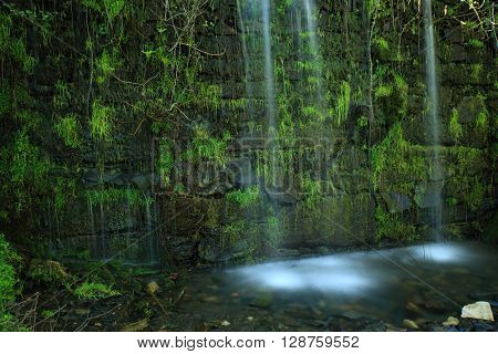 Small waterfall falling over wall with vegetation
