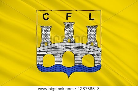 Flag of Confolens is a commune in southwestern France. It is one of the two sub-prefectures of the Charente department.