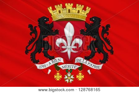 Flag of Lille is a city in the north of France. It is the principal city of the Lille Metropole.