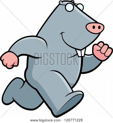 Mole Running