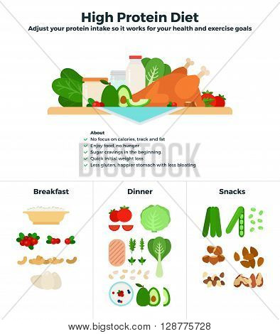 High protein diet vector flat illustrations. Products containing high dose of protein, recomendations for healthy nutrition. Products classified for breakfast, dinner and snacks isolated on white background