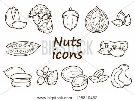 Set of cartoon hand drawn objects on nuts theme: hazelnut pumpkin and sunflower seeds peanut. Raw healthy food concept. Illustration with cartoon vegan food. Source of natural oils and protein