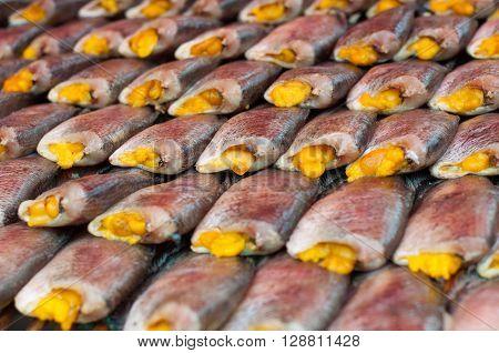 Close up salted Snake Skin Gourami drying fish