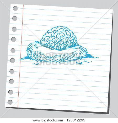 Brain in nest