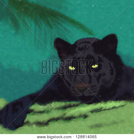 Wild cats in the habitat. Black Panther