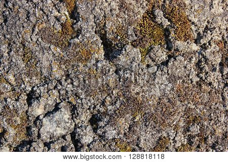 gray stone surface texture, natural material background