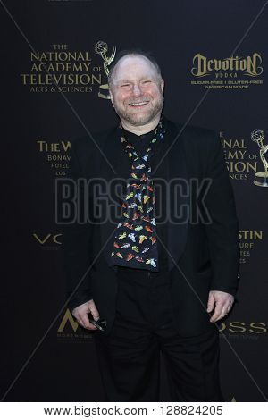 LOS ANGELES - APR 29: David Steven Cohen at The 43rd Daytime Creative Arts Emmy Awards Gala at the Westin Bonaventure Hotel on April 29, 2016 in Los Angeles, California