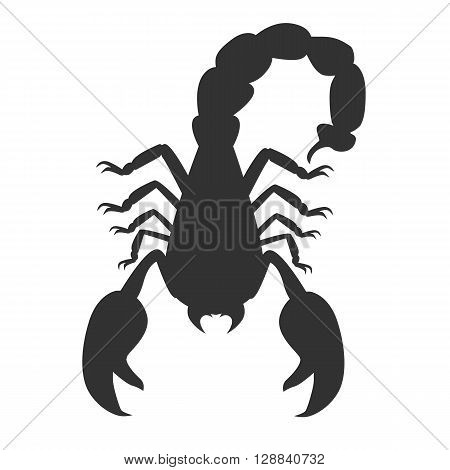 Scorpion animal isolated on white background. Deadly poisonous black scorpion with a sharp tip and strong powerful claws on backdrop. Sign of the zodiac astrological symbol. Vector illustration
