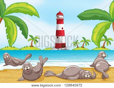 Seals relaxing on the beach illustration