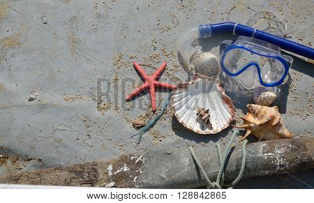 Seashells And Diving Mask In Old Boat