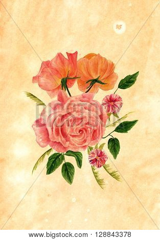 A watercolor bouquet of pink red and orange roses hand painted in the style of vintage botanical art on a sheet of paper toned and painted to look like old parchment with copyspace