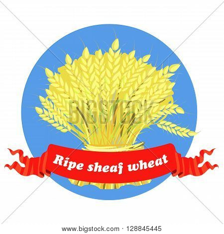 A large sheaf of wheat, ripe ears, illustration in vector.