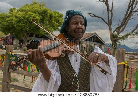 Man With Medieval Costume Fiddling