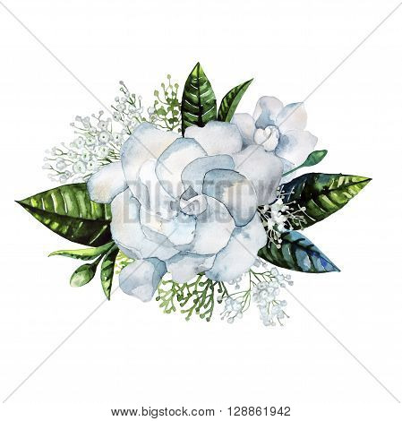 Watercolor gardenia and gypsophila vignette isolated on white background
