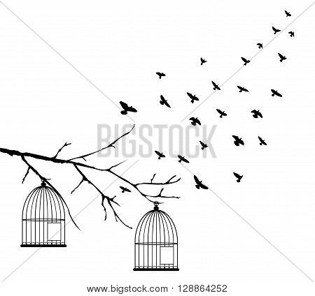 vector illustration of birds flying and bird cages in the tree