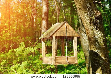 Wooden handmade bird feeder in form of little house hanged on the rope in the forest.