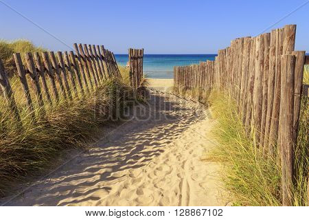 The Regional Natural Park Dune Costiere (Torre Canne): fence between sea dunes. BRINDISI (Apulia)-ITALY- The park covers the territories of Ostuni and Fasano along eight kilometers of coastline.