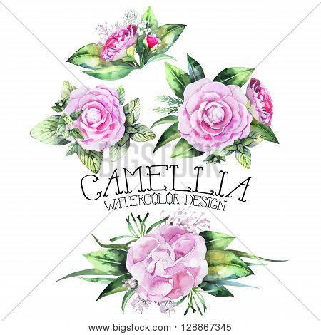 Watercolor collection of camellia vignettes isolated on white background