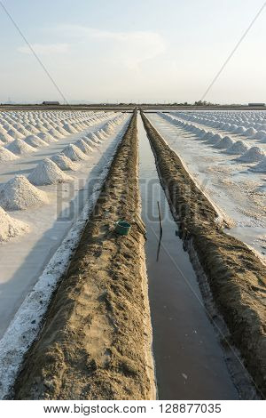 Water delivery system in saline under sun