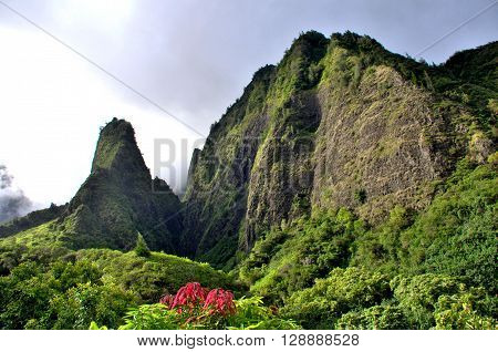 Tropical Iao Needle Valley park located on Maui, Hawaii.  Scenic travel destination, mountains and valleys with lush tropical foliage.