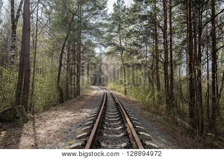 old rail road in green forest summer.