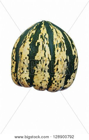 Sweet dumpling squash (Cucurbita pepo Sweet Dumpling). Image of single squash on white background