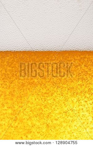 Light Beer Background