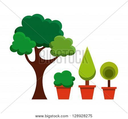 trees in pots design, vector illustration eps10 graphic