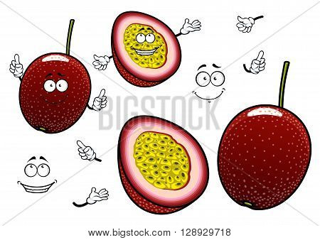 South american cartoon passion fruits characters with whole dark purple fruit and slice with juicy yellow flesh. Funny exotic fruits for childrens menu or recipe book design usage