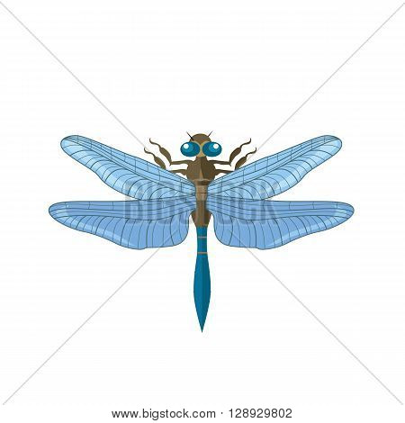 Silhouette of a dragonfly. Vector dragonfly isolated on white background