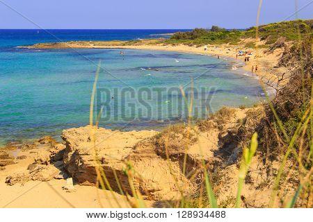 SUMMER.Salento coast: a nature reserve of Torre Guaceto.BRINDISI (Apulia)-ITALY-