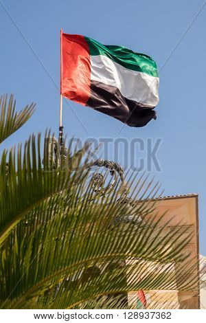 UAE flag blowing in the wind behind a palm tree.