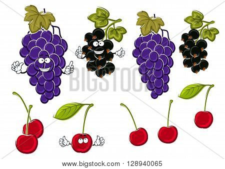 Vine of delicious violet grapes, ripe sweet cherries and healthful black currants fruits cartoon characters with green leaves and funny faces. Use as fruit dessert recipe or juice packaging design